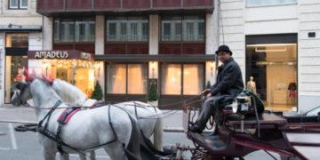 Hotel Amadeus i Wien. Foto: hotel-amadeus.at