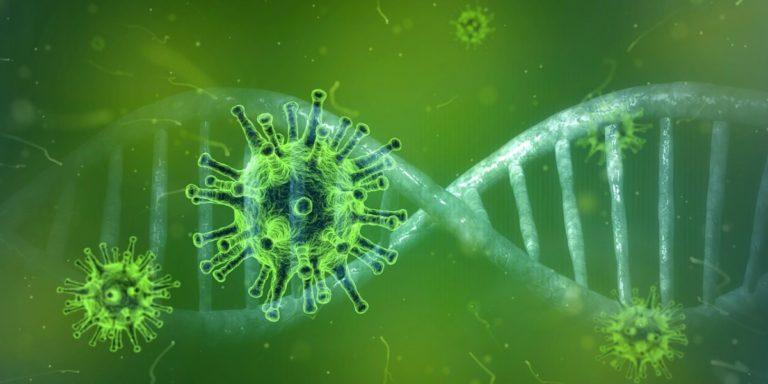 Coronaviruset COVID-19